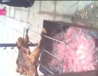 南京玄武区茶歇,烧烤冷餐会外卖提供商