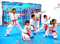 北京散打 泰拳 跆拳道 青少武术 女子防身术培训