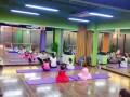 北京朝阳区亚运村青年路望京CBD学习芭蕾找桔子树艺术教育