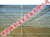 新型大棚骨架价格【邯郸颐和温室】蔬菜大棚造价