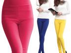 韩版春秋时尚弹力铅笔小脚外穿紧身显瘦高腰大码女装打底裤潮