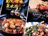 菜单设计 菜谱摄影 菜谱设计 广州金顺14年菜谱制作经验