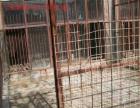 乌市南山水西沟板房沟的岔路口附近出租饲养禽类场地3亩多地