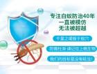 上海商场杀白蚁捕灭鼠杀虫灭蟑螂公司