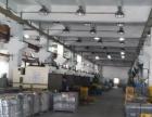 虎门沙角新推出1300平方米带空地一楼厂房招租