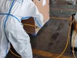 进口冻品肉类国际物流和报关清关流程