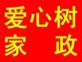 杨汊湖最好的家政公司,专业月保姆金牌月嫂高级育婴师,八年老店