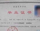 东北财经大学网络教育2017年春季招生简介