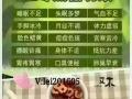 又木红枣黑糖姜茶适合什么样的人群喝?