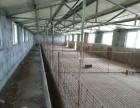 沂南双堠镇有证养殖场出售出租