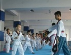 暑假学跆拳道就去正道馆