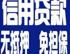 金沙江路个人POS机 网贷 信用贷款车贷