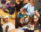 美国GreenAppleSTEM(青苹果STEM)课程合作