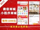 南阳网站建设 网络推广 小程序制作 APP软件定制开发