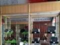柳州精品玻璃展示柜手办玩具烟酒珠宝首饰化妆品药房展柜