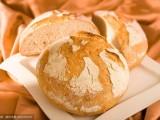 面包蛋糕技术培训 专业教学 档口小吃