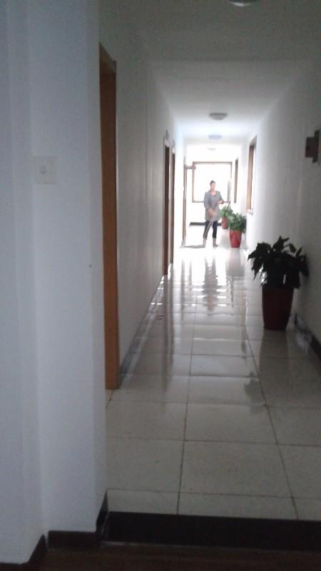 专业保洁,打扫卫生,擦玻璃,油烟机清洗,外墙清洗