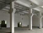常平卢屋一楼带现成水电500平方米厂房招租
