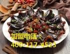 北京蛇王王加盟费多少 北京蛇王王加盟电话
