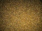 宽叶雀稗种子批发
