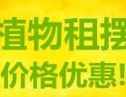 重庆主城办公植物租赁,植物风格设计,第一时间看现场