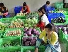批发配送蔬菜水果、猪肉牛羊肉、调料、海鲜鱼内含报价