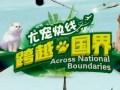 银川尤宠快线宠物托运宁夏最专业托运公司