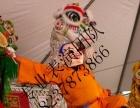 周口市市专业承接灯光舞龙商业表演艺术团