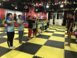 北京海淀区青少年散打泰拳暑假培训班