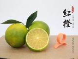 廉江紅橙我們傾注心力只為您能享受這份美味