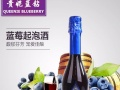 蓝美酒庄气泡酒贵妮蓝钻蓝莓起泡酒甜气泡香槟葡萄酒