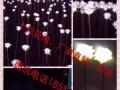 威海稻草人,风车,迷宫玫瑰花.灯光节.军事展览道具