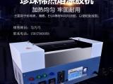 洛阳信成珍珠棉涂胶机 全自动小型喷胶上胶机 买熔胶机就找信成