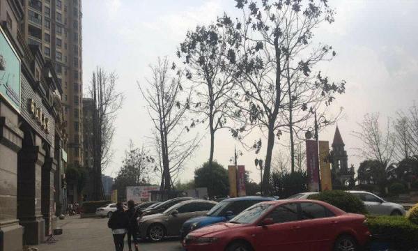 北京居住400万人口的小区_人口普查