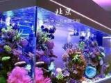 老手粘缸上門定制大魚缸大型海鮮池別墅魚缸