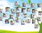 哈尔滨专业拍班级毕业照 幼儿园 小学纪念照集体合影有相册航拍
