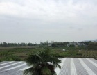阳光城 洛带古镇附近 厂房 600平米