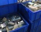 临沂回收废旧锂电池三元聚合物锂电池电动车底盘回收电话