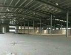 桔海二路 厂房 2400平米