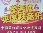 吉他中国魔菇音乐园韵琴行暑期招生