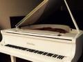 珠江三角白色钢琴p8九成新