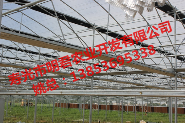 山东靠谱的连栋玻璃温室大棚_玻璃板温室搭建