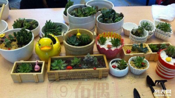 各类DIY亲子活动 烘焙,月饼,绘画,陶艺,环保