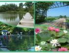 光明周边推荐农家乐团建野炊基地 畅享世外桃源尽在乐湖生态园