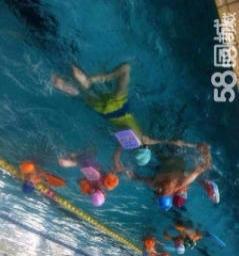 游泳私教一对一,迅速学会游泳