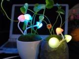 新品创意LED光控阿凡达感应蘑菇七彩灯小夜灯 节能床头灯饰批发