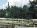 成都市彭州市升平镇有12亩农家乐低价出租
