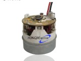 干式低压真空无刷直流吸尘器电机BL6555IF(65)dry