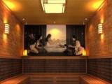 韩式汗蒸房,纳米汗蒸房,中国人寿十年承保终身维修