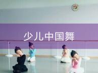 天津芭蕾舞培训哪家好-风尚典雅芭蕾舞培训中心